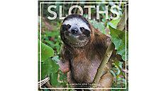 Sloths Wall Calendar (Item # LML760)