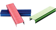 Color Bright Staples-6000 Per Box (Item # S7035123)