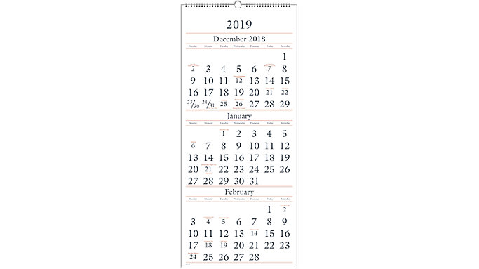 AT-A-GLANCE 3-Month Vertical Wall Calendar  (SW115)