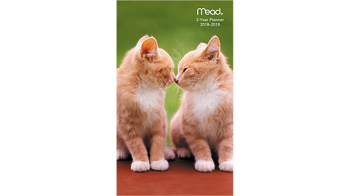 Mead Kittens 2-Year Monthly Pocket Planner  (TL2540)