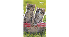 Kittens 2-Year Monthly Pocket Planner (Item # TL2540)