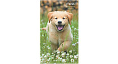 Puppies 2-Year Monthly Pocket Planner (Item # TL2550)