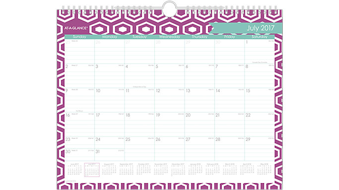 AT-A-GLANCE Sprinkle Academic Monthly Wall Calendar  (W1024-707A)