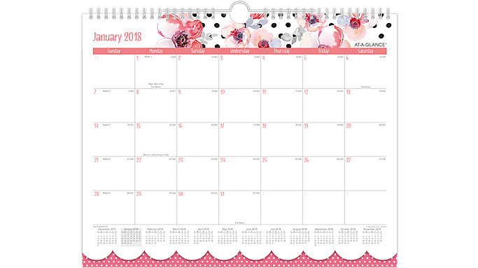 AT-A-GLANCE Kathy Davis Monthly Wall Calendar  (W1035-707)