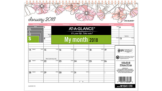 AT-A-GLANCE Blush Monthly Wall Calendar  (W1041-170)
