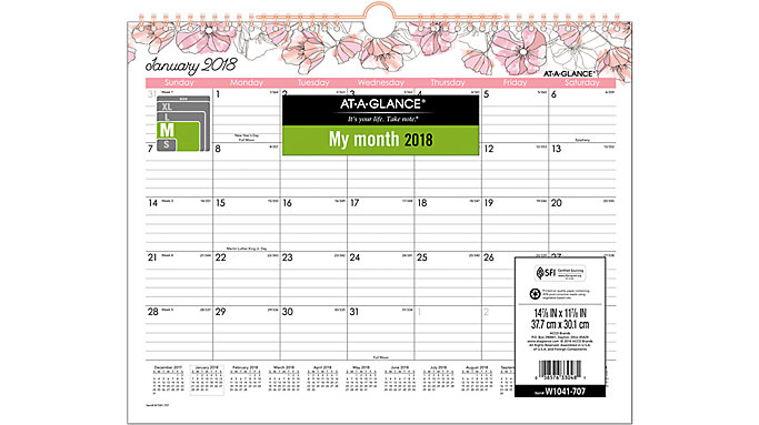 AT-A-GLANCE Blush Monthly Wall Calendar  (W1041-707)