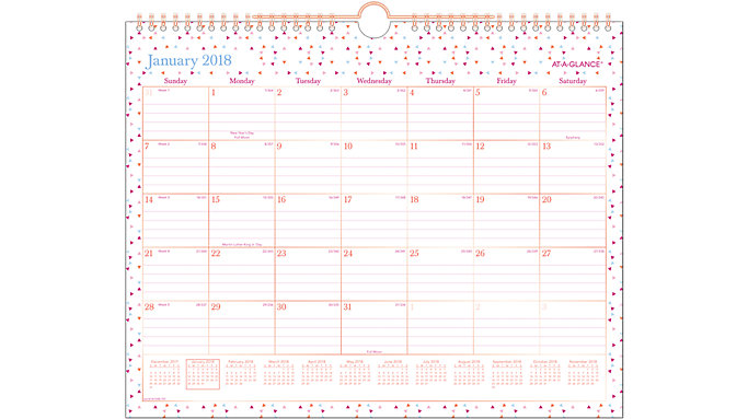 AT-A-GLANCE Spritz Monthly Wall Calendar  (W1048-707)