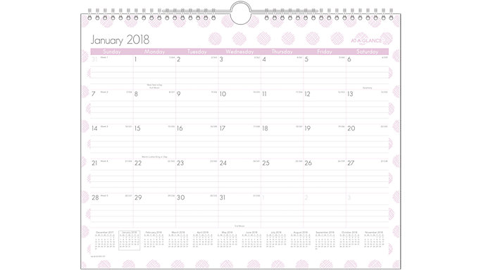 AT-A-GLANCE Dot Monthly Wall Calendar  (W1059-707)