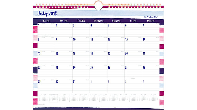 AT-A-GLANCE Carousel Academic Monthly Wall Calendar  (W1112S-707A)