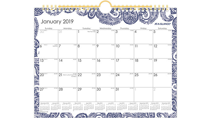AT-A-GLANCE Paige Monthly Wall Calendar  (W1141-709)