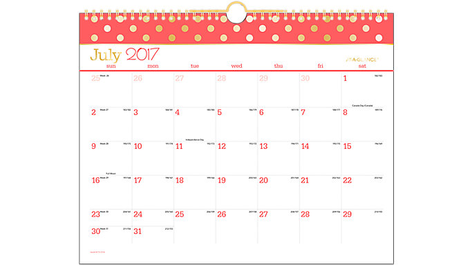 AT-A-GLANCE Color Pop Academic Monthly Wall Calendar  (W173-707A)