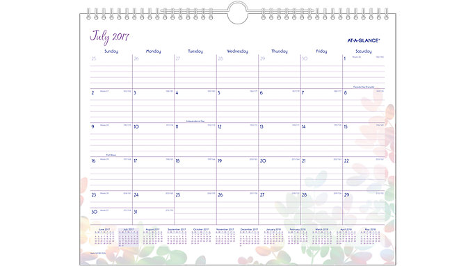 AT-A-GLANCE Aura Blooms Academic Monthly Wall Calendar  (W185-707A)