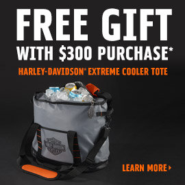 Free Gift with $300 Purchase