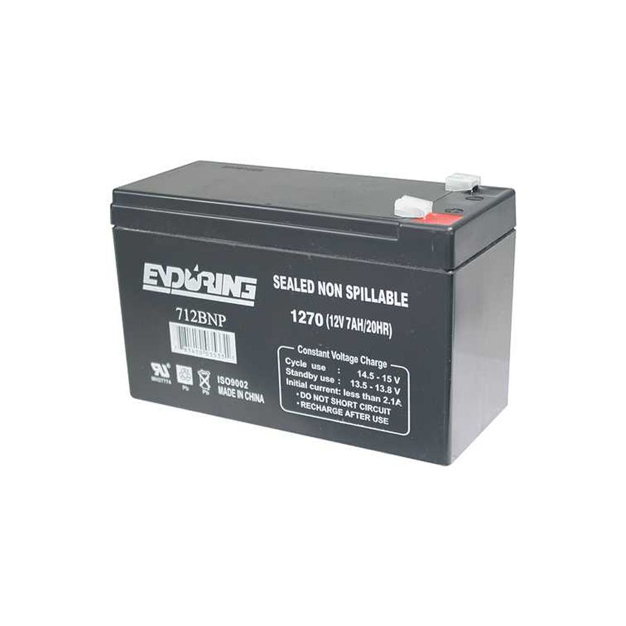Professional Series Access Module Battery