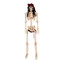 Pirates of the Caribbean - 60 Full size Jack Sparrow Poseable Skeleton