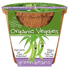 Dunecraft Organic Veggies - Green Beans