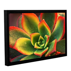 Brushstone Succulent Gallery Wrapped Floater-Framed Canvas Wall Art