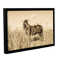 Brushstone It's A Bird And Horse Thing Gallery Wrapped Floater-Framed Canvas Wall Art