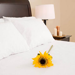 Adi Hospitality Villa Park 300tc Sateen Queen Fitted Sheet
