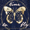 Am Navy Butterfly