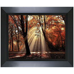 Dressed to Shine Framed Wall Art