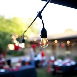 Bulbrite String Lights With S Shape Lamps Ylighting