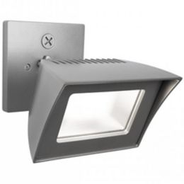 Wac Lighting Endurance Flood Light Ylighting
