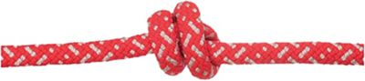 Edelweiss Discover 8.0mm Rope