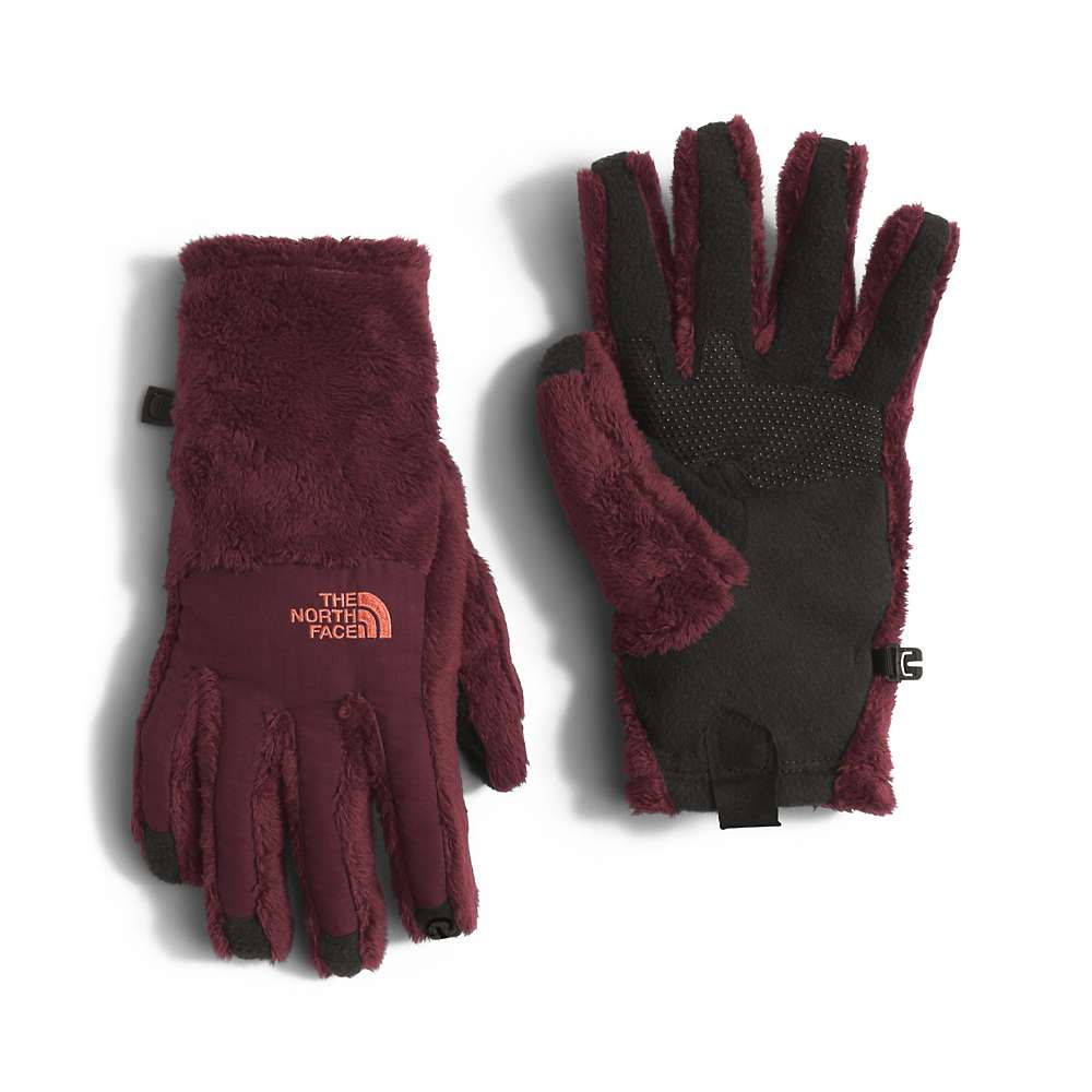 Osprey womens leather gloves - The North Face Women S Denali Thermal Etip Glove