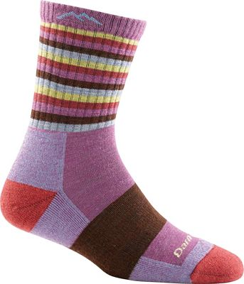 Darn Tough Women's Stripe Cushion Micro Crew Socks