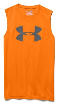 Under Armour Boys' Big Logo SL Tee