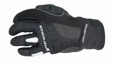 Endura Men's Dexter Glove