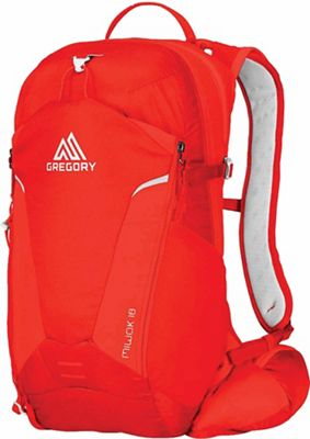 Gregory Men's Miwok 18L Pack
