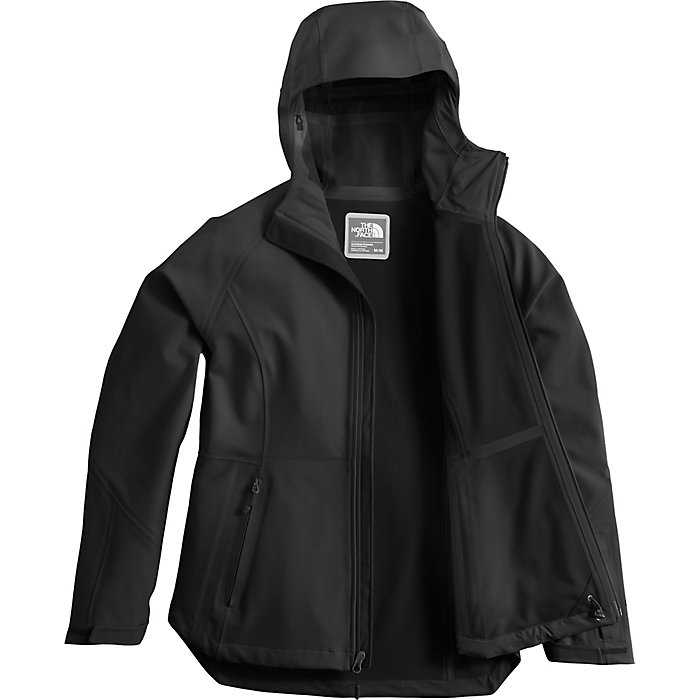 9f7ff0f70 The North Face Women's Apex Flex GTX Jacket