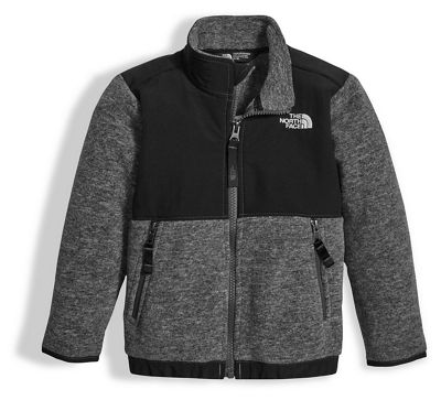 The North Face Toddler Denali Jacket