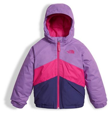 The North Face Toddler Girls' Brianna Insulated Jacket