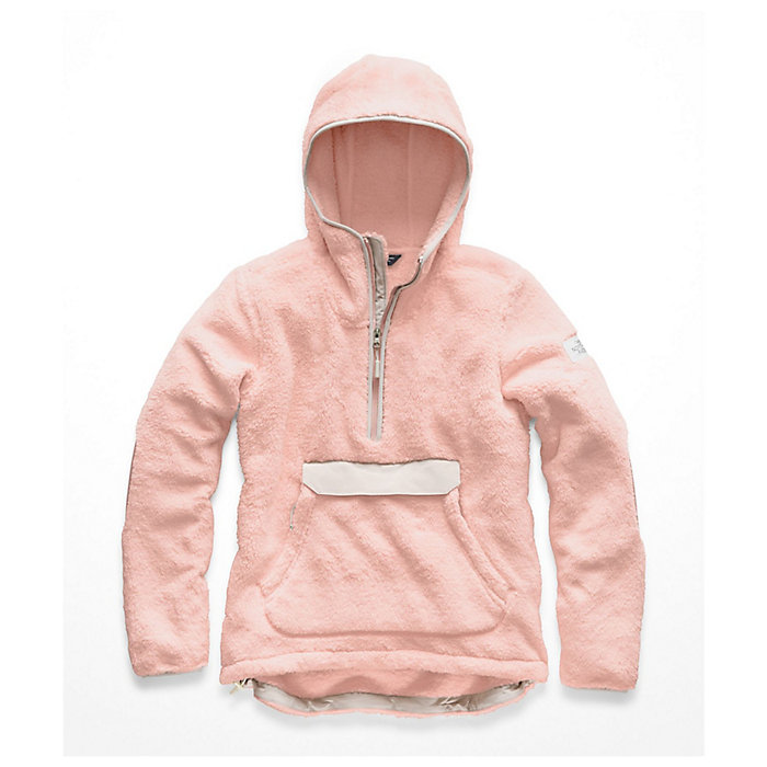 0992aeab The North Face Women's Campshire Pullover Hoodie