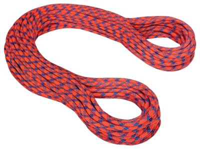 Mammut 9.8mm Eternity Protect Rope