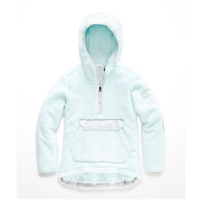 The North Face Kid s Campshire Pullover Hoodie - Moosejaw c134686a1