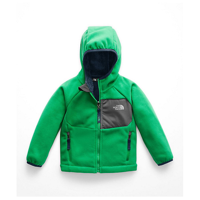 6cd05cbe5 The North Face Toddler's Boys Chimborazo Hoodie - Moosejaw