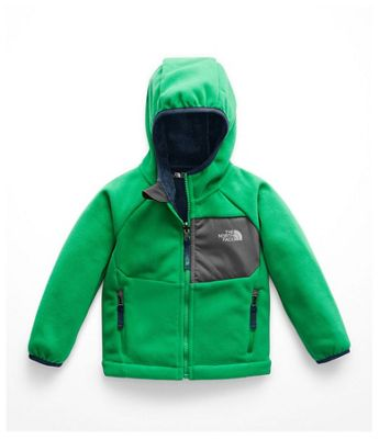 The North Face Toddler's Boys Chimborazo Hoodie