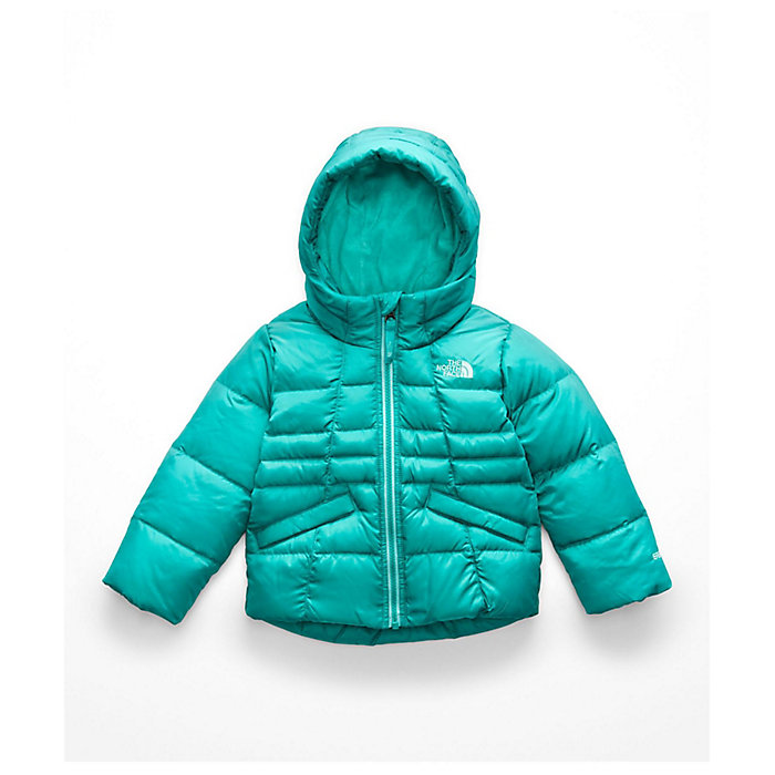 c53530a56 The North Face Toddler's Girls Moondoggy 2.0 Down Jacket - Moosejaw
