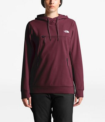 The North Face Women's Tekno Hoodie Pullover