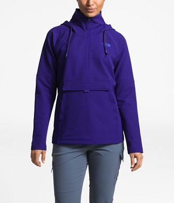 The North Face Women's Tekno Ridge Hoodie