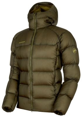 Mammut Men's Meron IN Hooded Jacket