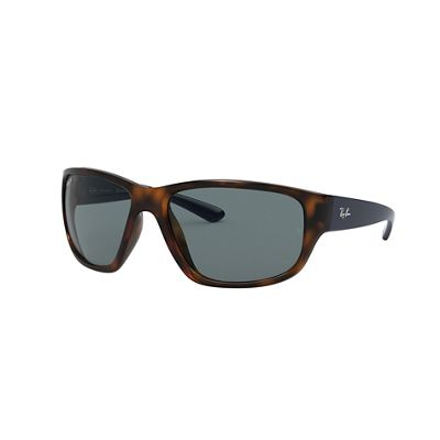 Ray Ban 0RB4300 Sunglasses