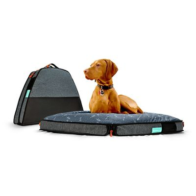 Spruce Pup Dog Bed