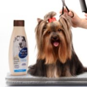 Oster® Oatmeal Essentials Flea & Tick   Shampoo image number 3