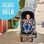 Modes stroller supports children up to 50 pounds image number 5