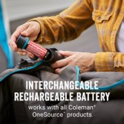heated blanket with interchangeable rechargeable battery image number 1
